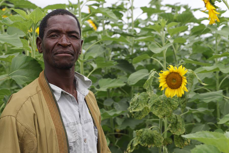Farmers who are some of the beneficiaries of the Economic Empowerment Program which Norwegian Church Aid Malawi is piloting with Churches Action in Relief and Development - CARD - and the Mikonga Cooperative in Mchinji. Photo: NCA/Håvard Hovdhaugen